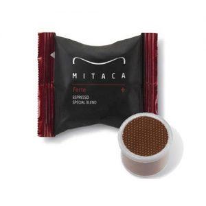 MITACA FORTE -  IES  SYSTEM